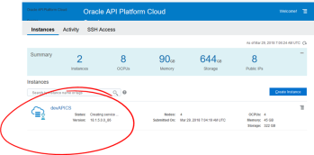 Teaching How to use Terraform to automate Provisioning of Oracle API