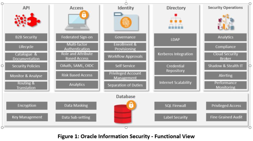 Oracle Info Sec Functional